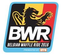 Bwr 2016